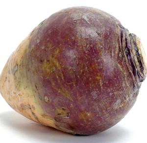 rustytherutabaga's Profile Picture