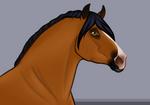 Magrur ibn Ansam ox    Arabian Stallion