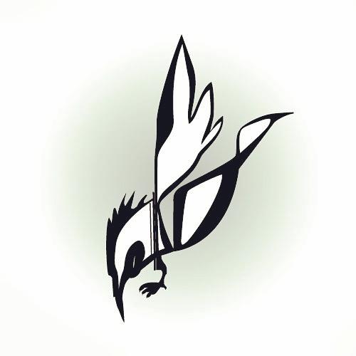 Birdie by zlajonja