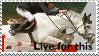 Jumper stamp by Emotionless-animal