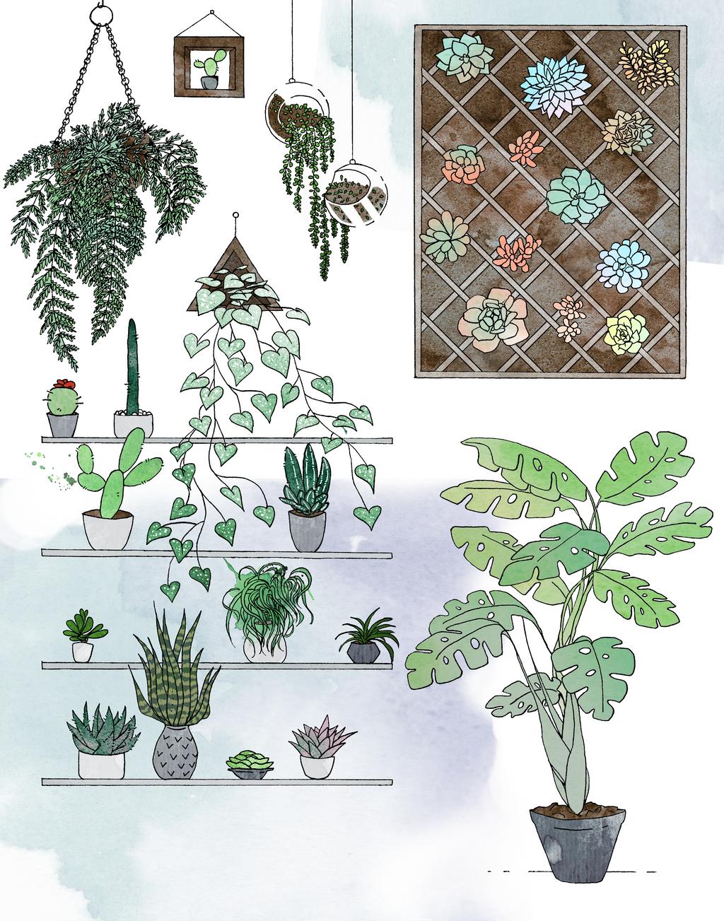 Plants by Vossen-Art