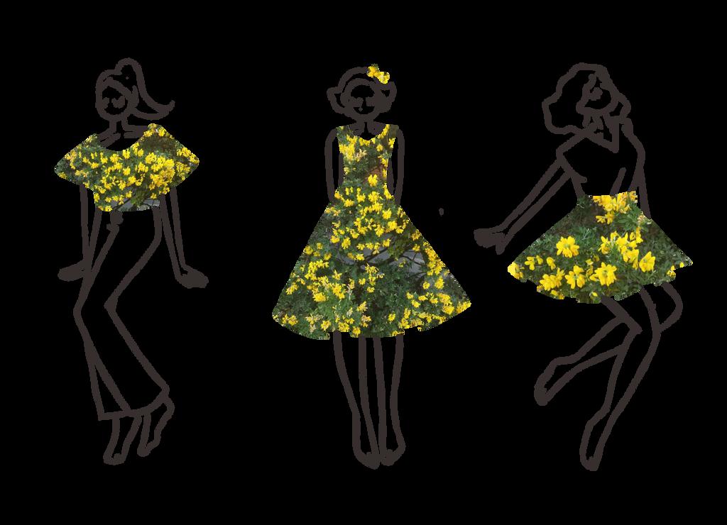 Flowers by Vossen-Art