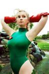 Street Fighter: Cammy White 4