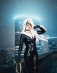 Black cat / Felicia Hardy cosplay