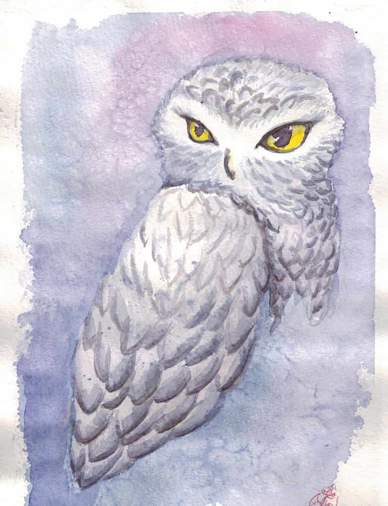 fantastic owl Buklya by spiritImmortalLisa