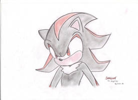 Shadow The Hedgehog by AllyStrixia1989