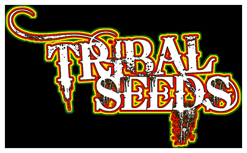 Tribal Seeds-Rasta by oneTHIRTYsix on DeviantArt