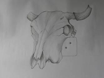Cachos de vaca