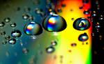 Droplets Wallpaper