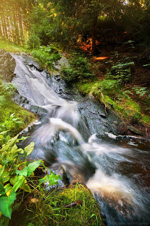 Go With The Flow by MarcoHeisler