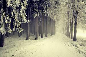Frozen Silence by MarcoHeisler