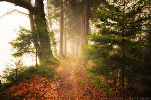 As We Walk Alone
