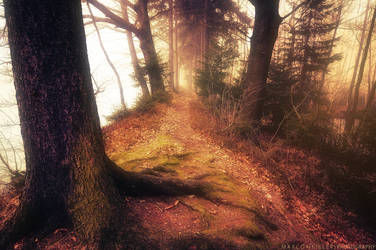 The Only Way by MarcoHeisler