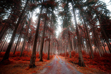 Red Fall
