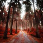 Glowing Red Fall