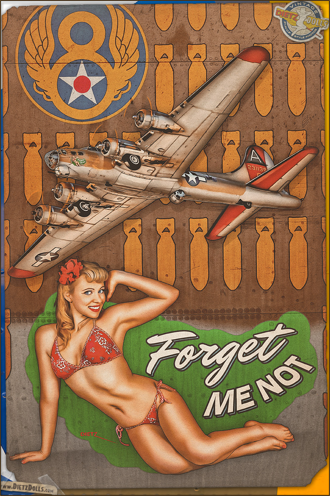 Nose Art - 'Forget Me Not' by warbirdphotographer