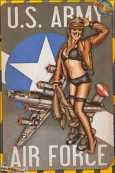Pinups - USAAF Liberator by warbirdphotographer