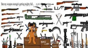 Lola's weapons stash