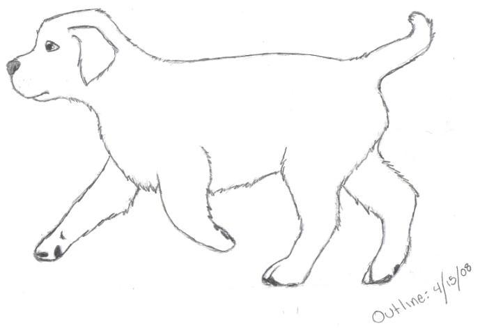 Golden Retriever Pup OUTLINE By Wolf Of The Artic On DeviantArt