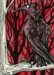 Rabe IV Kakao Karte / Raven IV ACEO Card by gabrieldevue