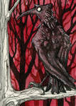 Rabe IV Kakao Karte / Raven IV ACEO Card by gabrieldevue