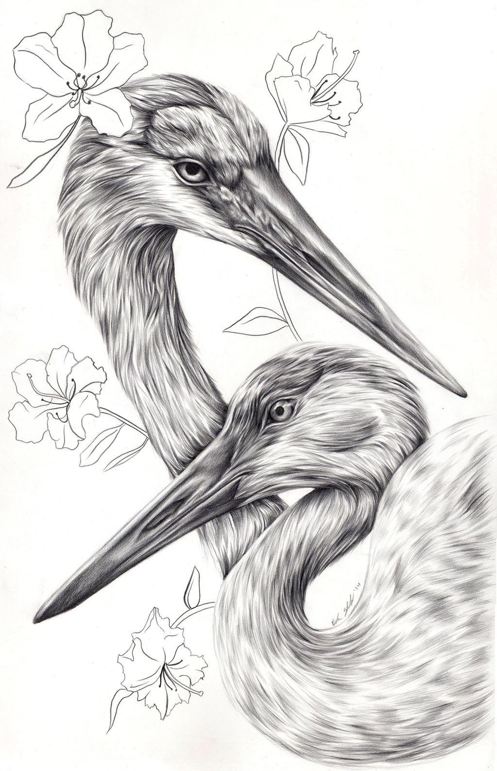 Azaleas/Cranes by Elsma