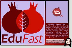 EduFast Company Logo by MatanArie
