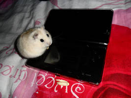 Teemo loves the 3ds by ras-blackfire