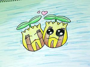 Sunkern lovely couple