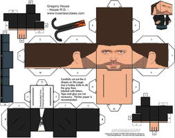 Dr House Cubeecraft by kociok1