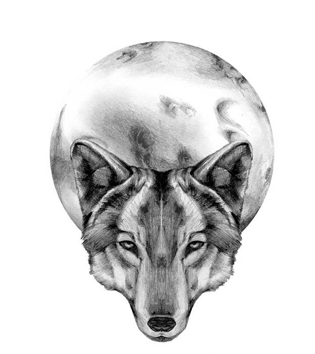 wolf tattoo by chatenoire on deviantart. Black Bedroom Furniture Sets. Home Design Ideas
