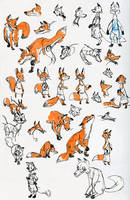 The Fox and the Crane - Fox Concept Designs by HyraxAttax