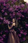 Lilac **