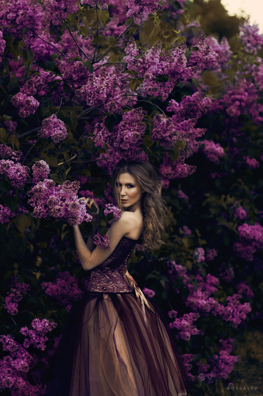 Lilac ** by rossalev-andrey