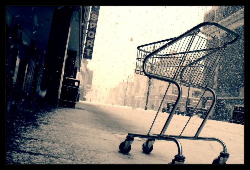 Shopping cart by geckokid