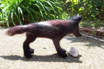 Needlefelt Black Wolf II