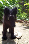 Needlefelt Black Wolf III
