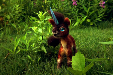 Little Brown Unicorn