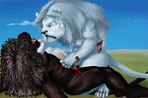 Lions Versus by RRedolfi
