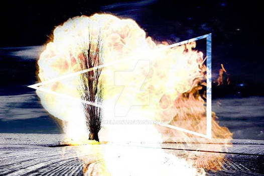 Poplar on fire
