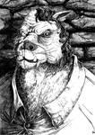 Les Chroniques de Yelgor - Noctule