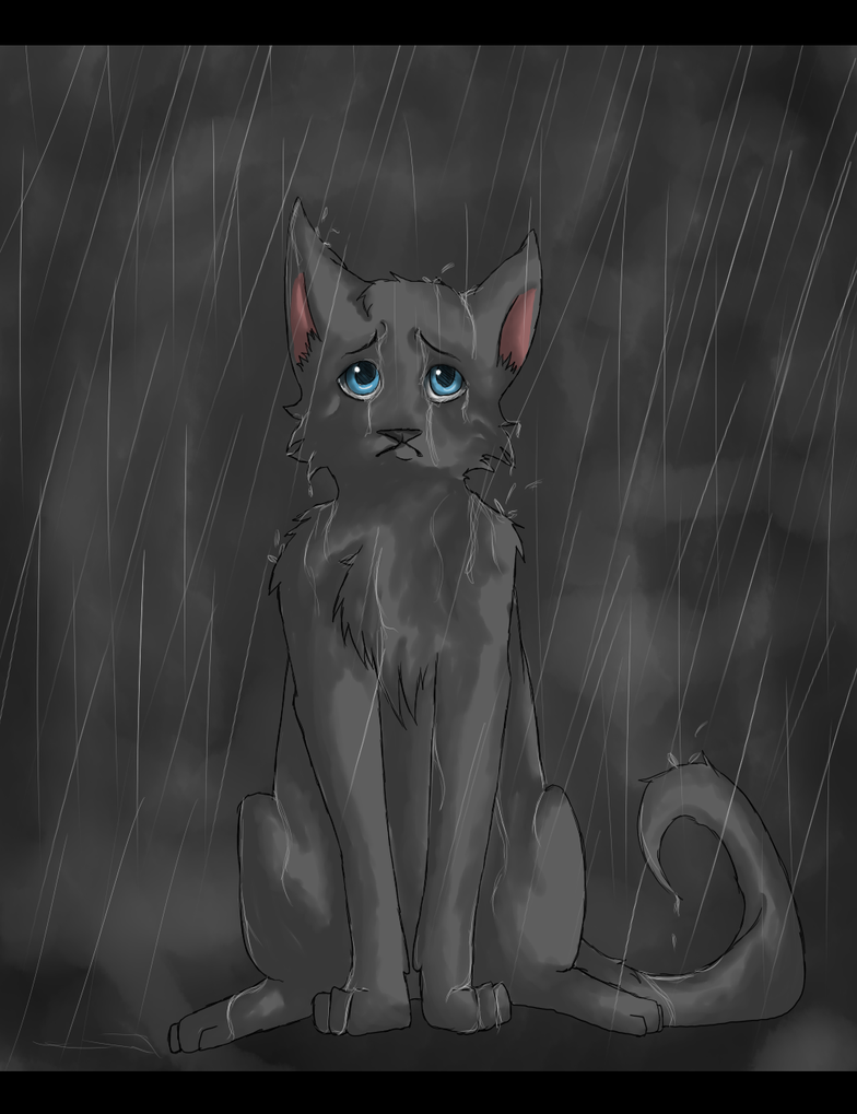 cat in the rain by ernest