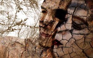 Wooded Love by FreakyPenguin