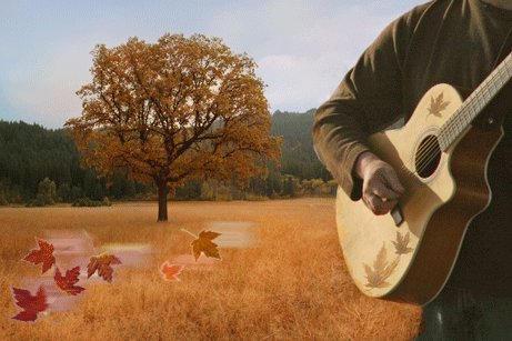 Guitarist In The Autumn