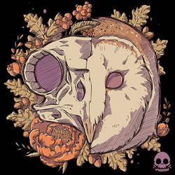 Autumn Barn Owl Skull
