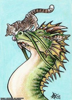 Dragon and Kitten