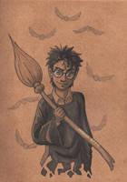 Harry James Potter (book 1) by TakuSalvemini