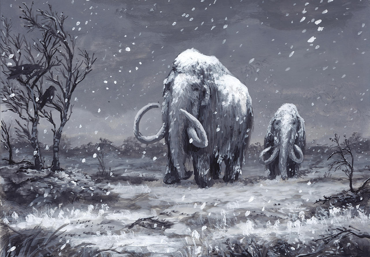 Mammoths and First Snow