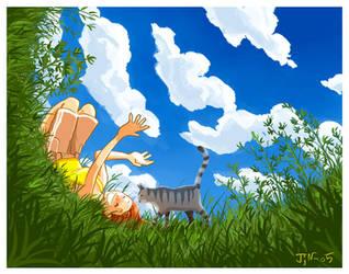 Summer Sky by jjnaas