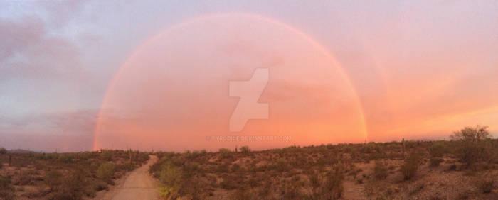 Arizona in one shot